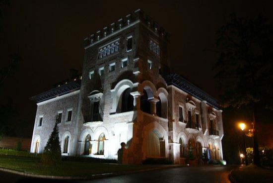 Castillo del Bosque la Zoreda: Castillo de noche