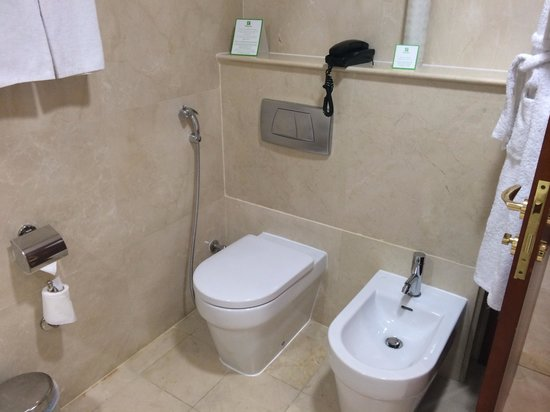 Holiday Inn Bur Dubai - Embassy District: Toilet