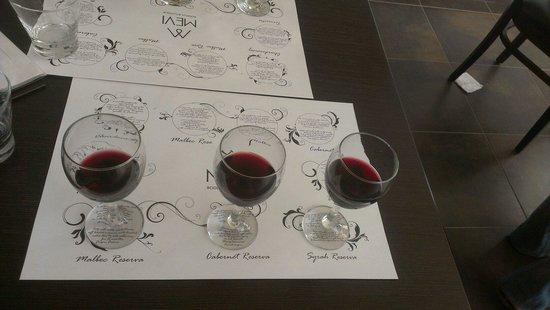 Mevi Bodega Boutique: Choose your wine!