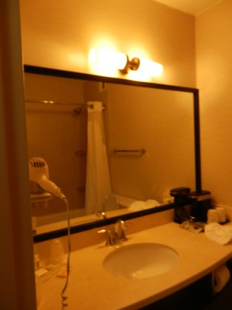 Holiday Inn Civic Center (San Francisco): baño