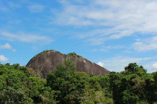 Foundation for Nature Preservation (Stinasu): Looking up at the Voltzberg