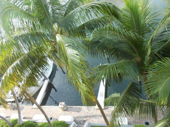 Marina Del Mar Resort And Marina : Looking down at towpath below hotel