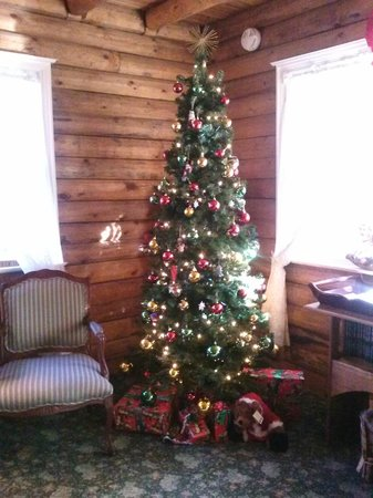 J. Patrick House Bed and Breakfast Inn: Tree in lobby :)