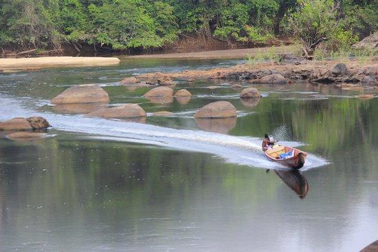 Foundation for Nature Preservation (Stinasu): Boatsman Sunny expertly negotiating the river