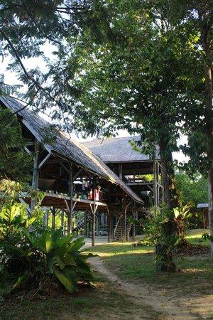 Foundation for Nature Preservation (Stinasu): The Station