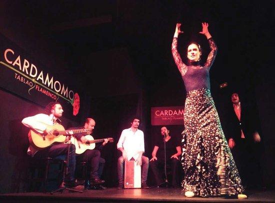 Tablao Flamenco Cardamomo: grupo sobre el tablao