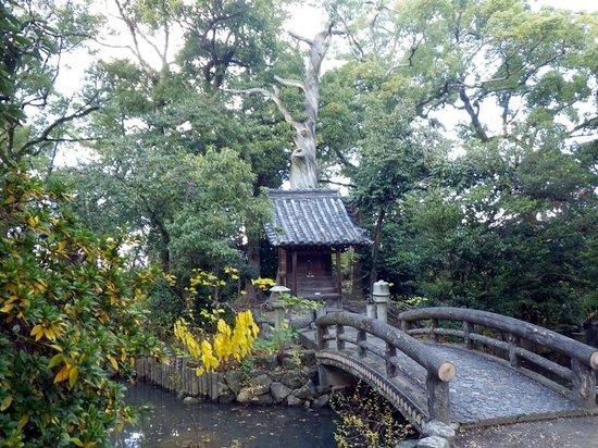 Zentsu-ji Temple : 霊気漂う龍王社