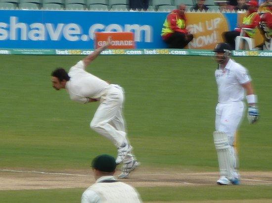Adelaide Oval: The Aussie destroyer - Mitchell Johnson. Damn him!
