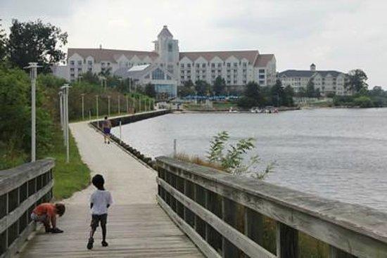 Hyatt Regency Chesapeake Bay Golf Resort, Spa & Marina : View from Marina