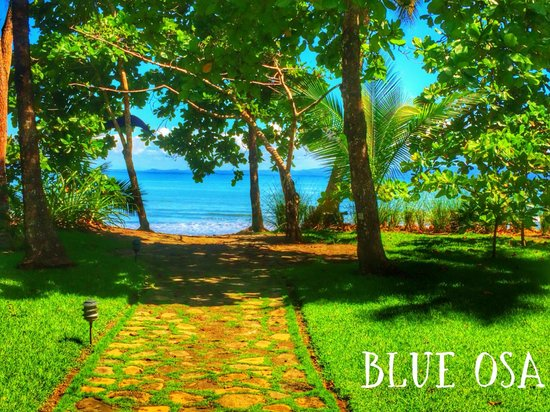 Blue Osa Yoga Retreat and Spa : The Blue Osa path to the beach, literally steps away!