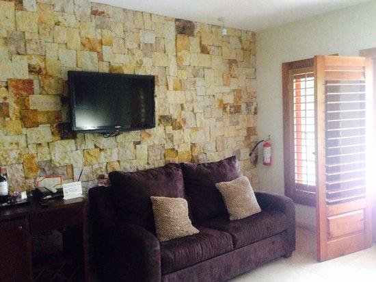 Falls Resort at Manuel Antonio: Tv and living area