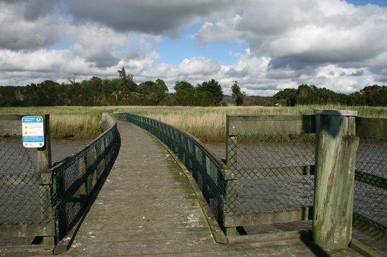 Tamar Island Wetlands: Boardwalk