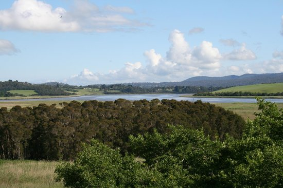 Tamar Island Wetlands : View from the hill