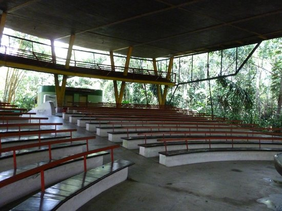 Mindu Park : Anfiteatro