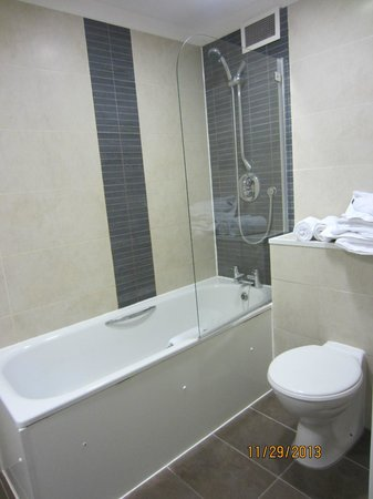 Dolphin House Serviced Apartments: Shower/toilet