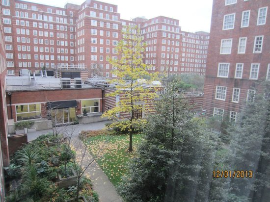 Dolphin House Serviced Apartments : View from Room