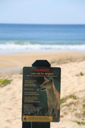 Eurong Beach Resort: Aviso na saída para a praia