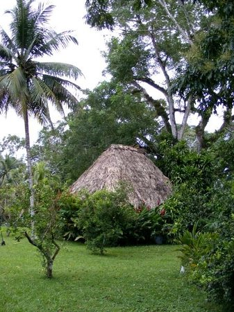 Banana Bank Lodge & Jungle Horseback Adventure: Une des cabanes