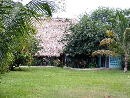 Banana Bank Lodge & Jungle Horseback Adventure: Salle commune pour les repas