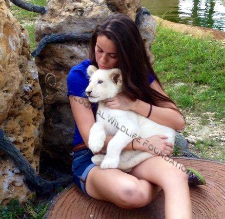 Zoological Wildlife Foundation: White Lion cub encounter