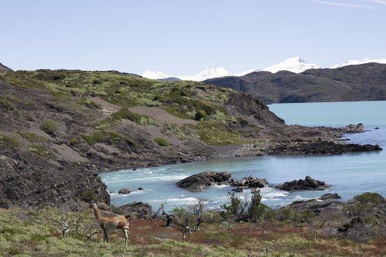 Nordenskjold Lake: Salto Grande