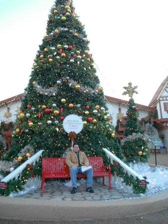 Christmas Town 4 Picture Of Busch Gardens Williamsburg Williamsburg Tripadvisor