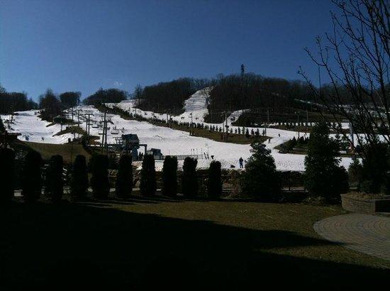 Bear Creek Ski & Recreation Area: Ski Area