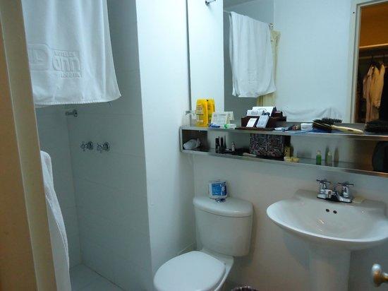 Hotel Dann Avenida 19: banheiro