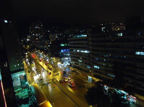 Hotel Dann Avenida 19: vista
