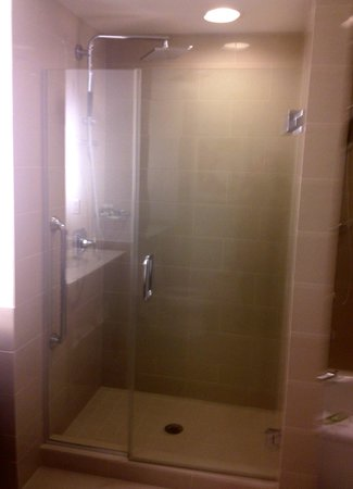 The Westin Houston Memorial City: walk-in shower