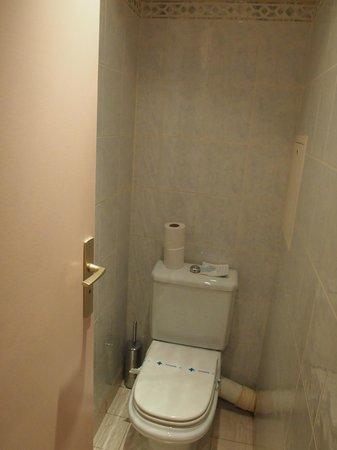 Hotel Louvre Rivoli : Toilet