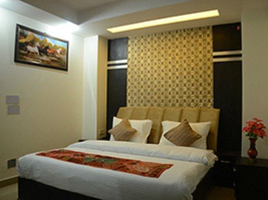 Hotel Blue Pearl Paharganj : Guest Room