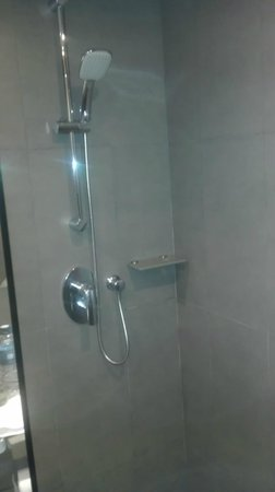 Novotel Bangkok on Siam Square: Shower