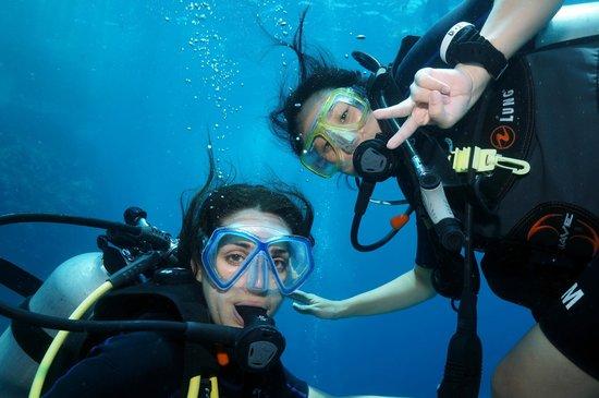 The Dive Inn: Underwater fun...