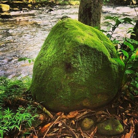 Duke's Kayak Adventures : Cool rock