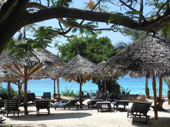 My Blue Hotel: il mare visto dalla spiaggia privata