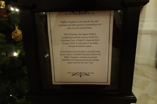 Raffles Hotel Singapore : Tree from Oregon