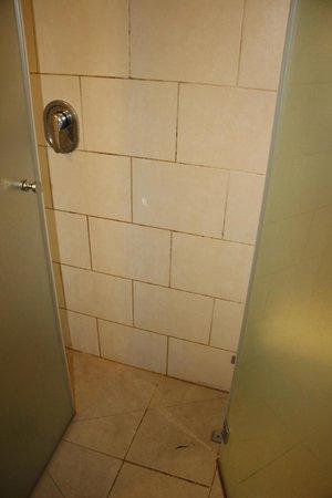 City Center Jerusalem: Filthy, moldy shower