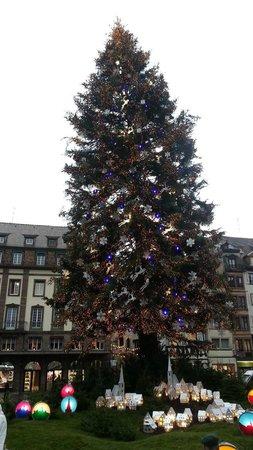 Marché de Noël : Sapin de 30 mètres de haut