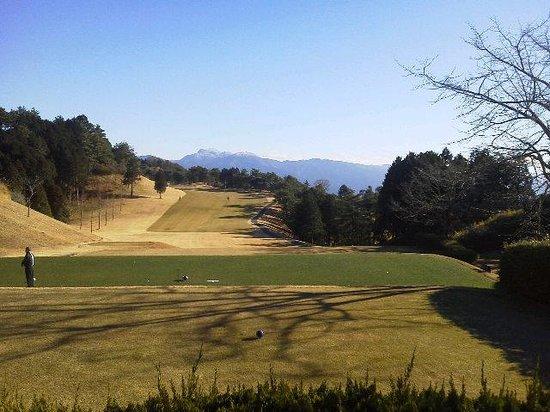 Fuji Ace Golf Club