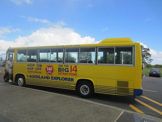 Auckland Hop On Hop Off Explorer: Explorer