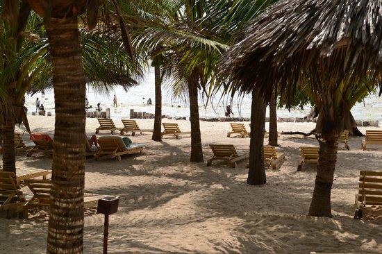 Jumbo Watamu : spiaggia