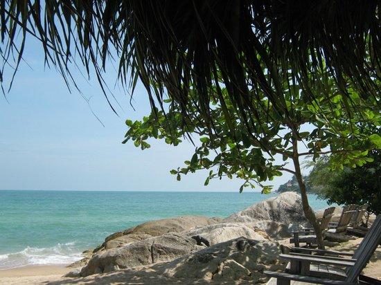 Seahorse Residence : Пляж Чавенг ной
