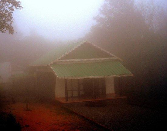 Punarjani Resorts: The executive room on a foggy morning