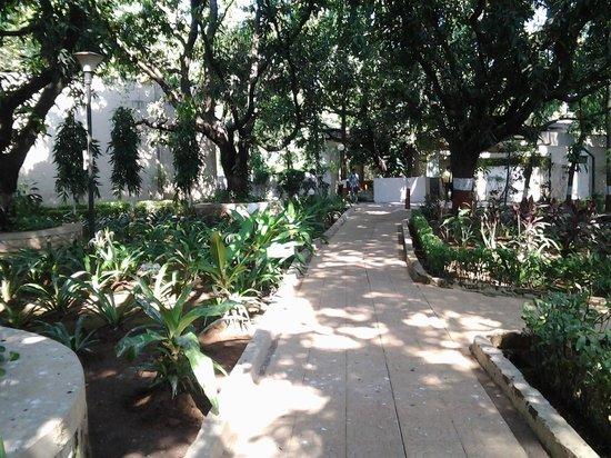 Ras Resorts Silvassa: Surroundings