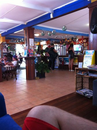 Calypso Inn Backpackers Resort : The reception