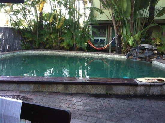Calypso Inn Backpackers Resort : The pool