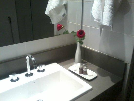 Ipanema Inn: Lavabo