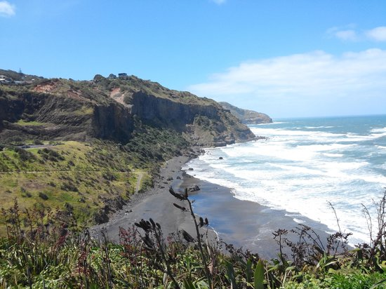 Muriwai Gannet Colony: view 2