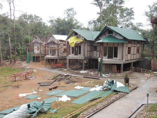Infinity Resort Kaziranga: The contruction next door
